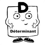 déterminant [300x300]