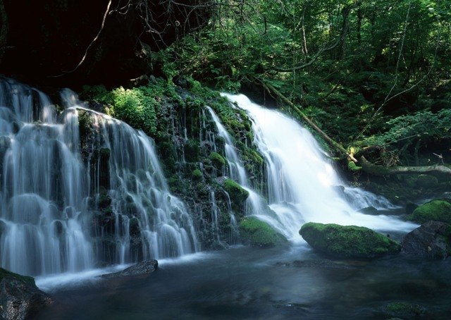 Waterfalls Desktop Wallpaper Forest Falls Aberdare National Park Kenya Luxury Cars