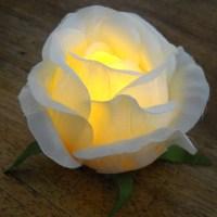 Rose tea light