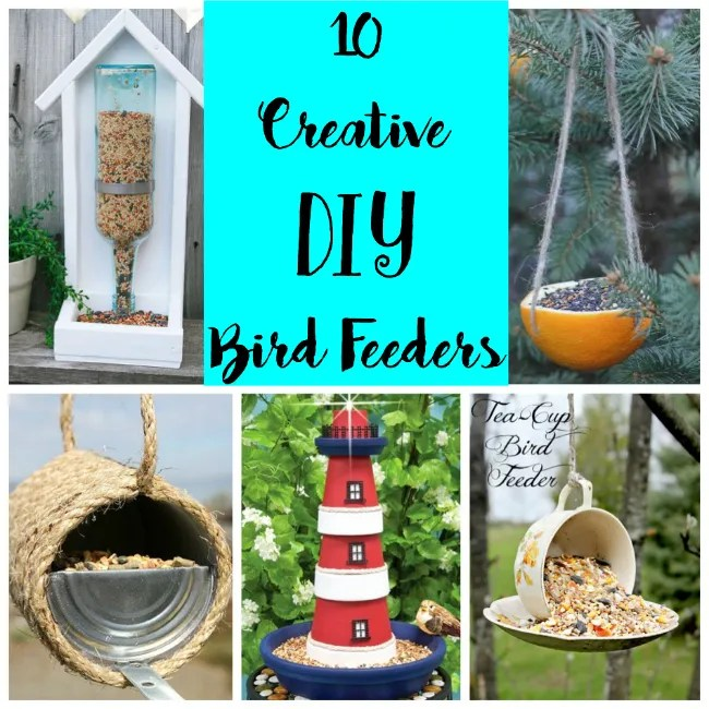 The Friday Find: Creative DIY Bird Feeders