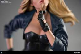 dc-comics-black-canary-premium-format-figure-glove detail