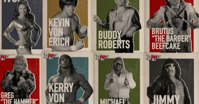 WWE 2K17 DLC updates: new content renews Freebird, Von Erich rivalry