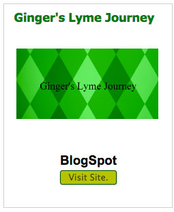 gingers-lyme-journey
