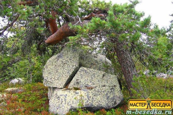 pervonachalnie-materiali-dla-besedki-shale