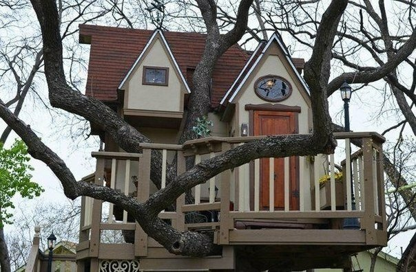 Домик для внуков на дереве-001