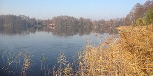 Todnitzsee