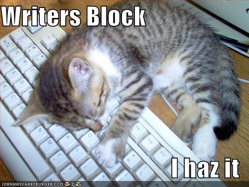 writerblcat.jpg