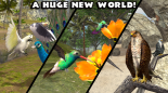 Ultimate Bird Simulator V APK Paperblog