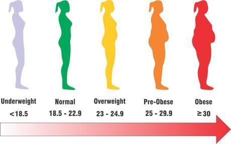 BMI Calculator India Body Mass Index Chart For Asian Men  Women