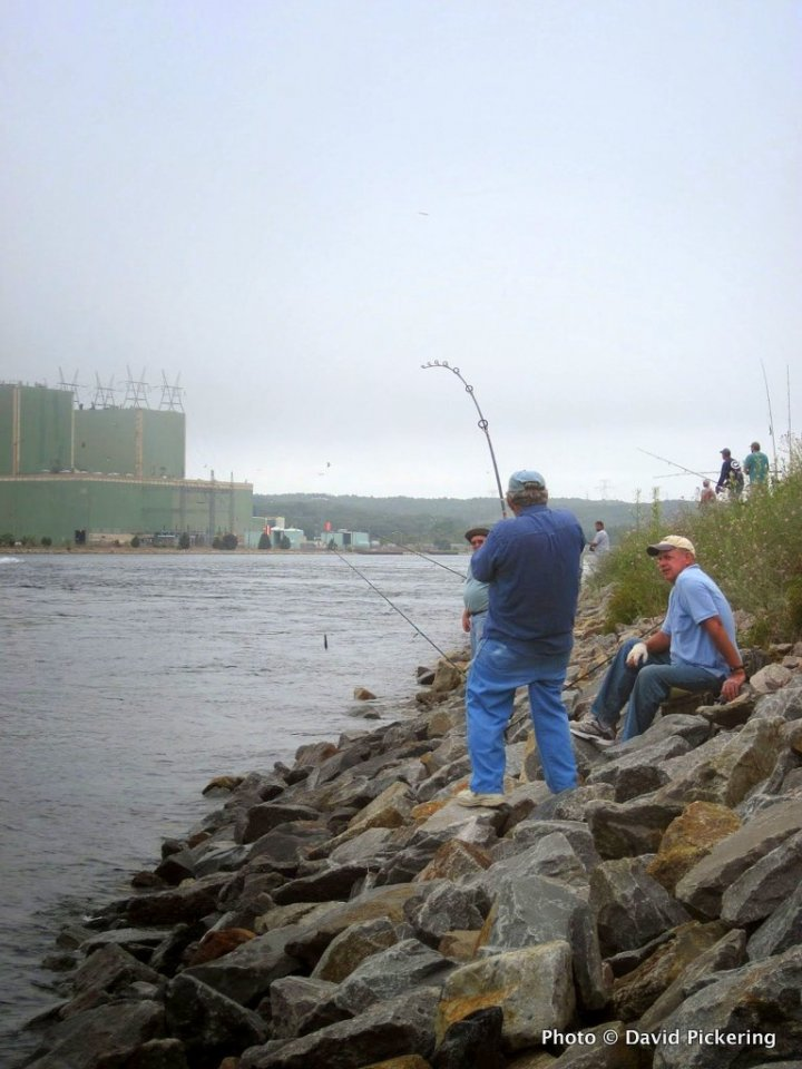 High Tides, Hot Fishing to Come at the Cape Cod Canal? Massachusetts