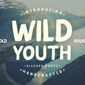 Creativemarket_Wild_Youth_Typeface_317323_icon.jpg