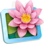 LilyView icon