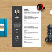 grey_resume_template_photoshop_478913_icon.jpg