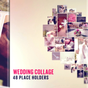 Videohive wedding 19328855 icon