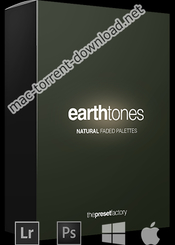 Preset factory earth tones icon