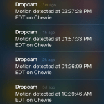 DropCam HD alerts