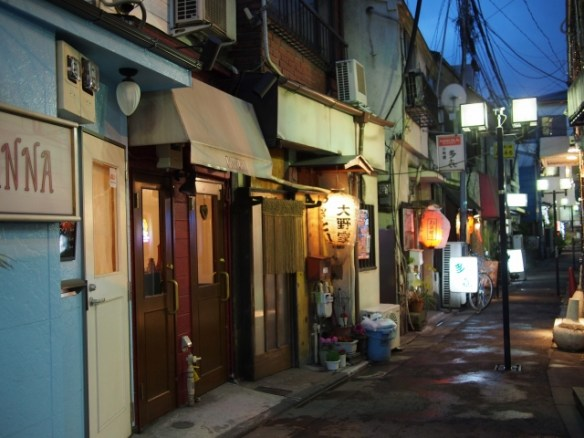 P31300321 大森駅至近のディープゾーン,地獄谷と居酒屋横丁ビル / Pub alley nearby Omori Station,commonly called the Hell Valley