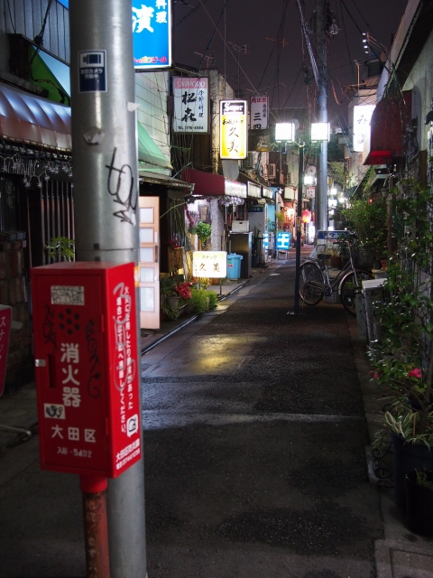P31300551 大森駅至近のディープゾーン,地獄谷と居酒屋横丁ビル / Pub alley nearby Omori Station,commonly called the Hell Valley