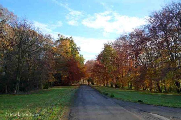 Colores otoñales de camino a Hopetoun Place