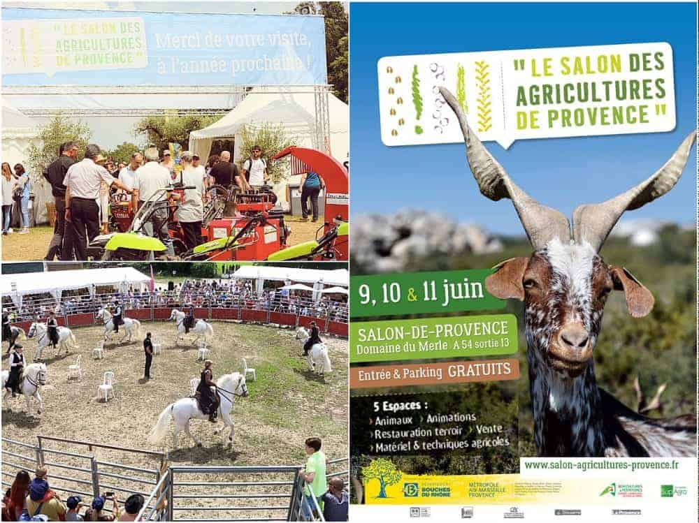 Top Départ Pour Le Salon Des Agricultures De Provence 2017 Made In Marseille - Intersport Salon De Provence