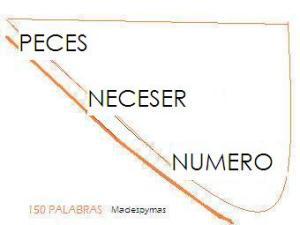 PECES NECESER NUMERO