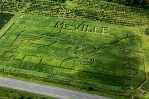 Mustang Madness Corn Maze 2013 (2)