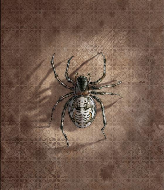 Arte conceitual das aranhas de Aragogue (fonte: Jim Kay)