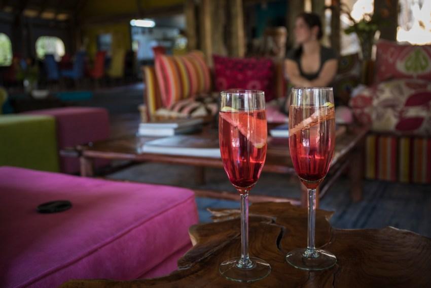 Glasses of wine on safari