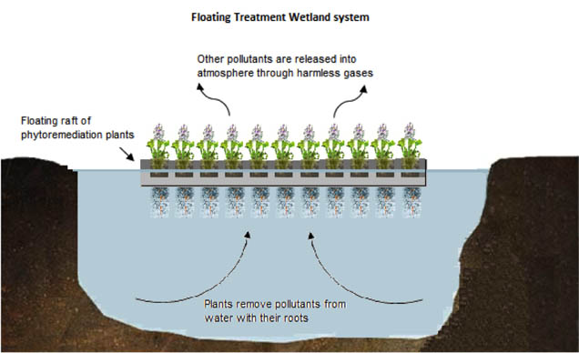 Sustainable Water Resources Management using Floating Treatment