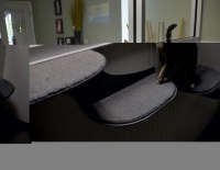 Magnolia's Bed & Biscuit - Pet Daycare & Boarding Services