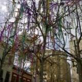 Where Not To Celebrate Mardi Gras