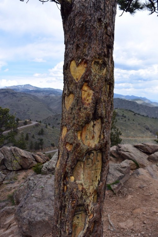 Lookout Mountian in Colorado