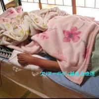 頸椎ヘルニア・頚腕症【うでのしびれ】 ~仰向けに寝ると腕が痺れて眠れない~福岡県福津市在住