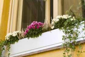 ikkunalaatikko-0104