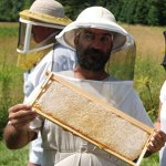 Backwoods Bee Farm Hosting Overwintering Nuc Workshop June 28, 2014