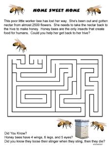 Home Sweet Home Maze