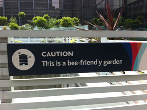 Bee-Friendly Garden (Seen in London)