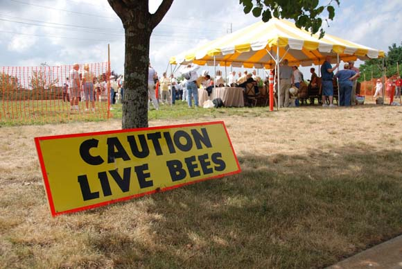 Caution - Live Bees - EAS 2011 Rhode Island