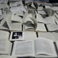Une envie de lecture ?