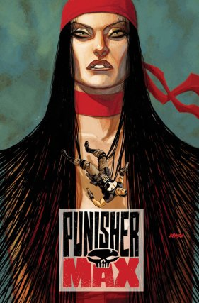 PunisherMAX_20_Cover