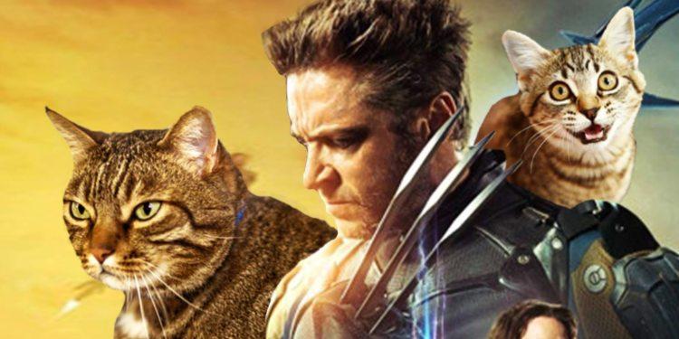 X-Men-Cats-THUMB