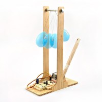 555 Timer Ball&nbsp;Whacker