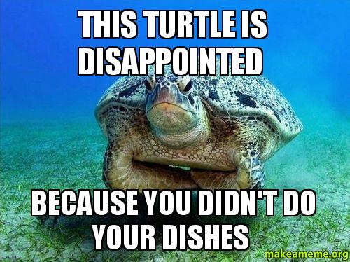 Cute Wallpapers Of Grumpy Cat Disappointed Turtle Meme