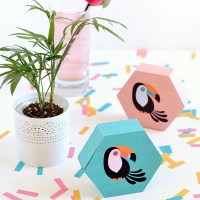 Make it | Printable toucan gift boxes