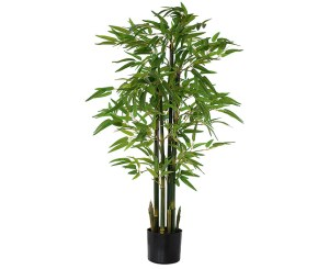 4' Potted Bamboo Tree - Bloom.uk.com