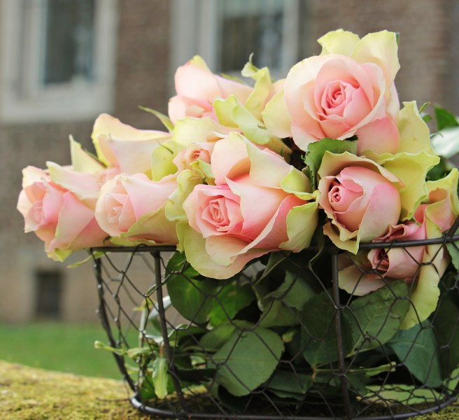roses in wire basket