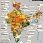 Flavours of India…Food 4 Thought