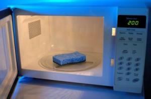 microwave-sponges
