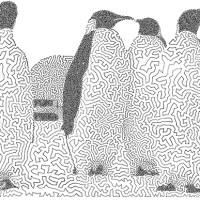Image (1) penguins-211.png for post 80442
