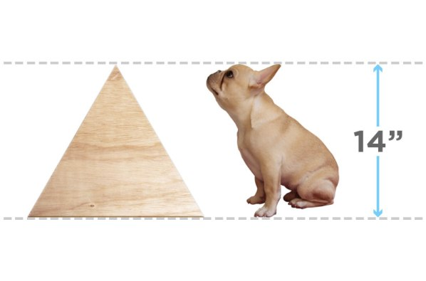 geometric dog house-2